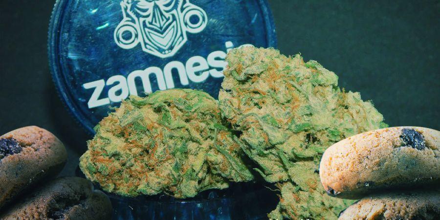 Die besten Sativa-Sorten für Cannabis-Edibles