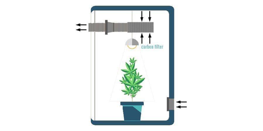 Wo man einen Aktivkohlefilter im Grow Room positionieren sollte