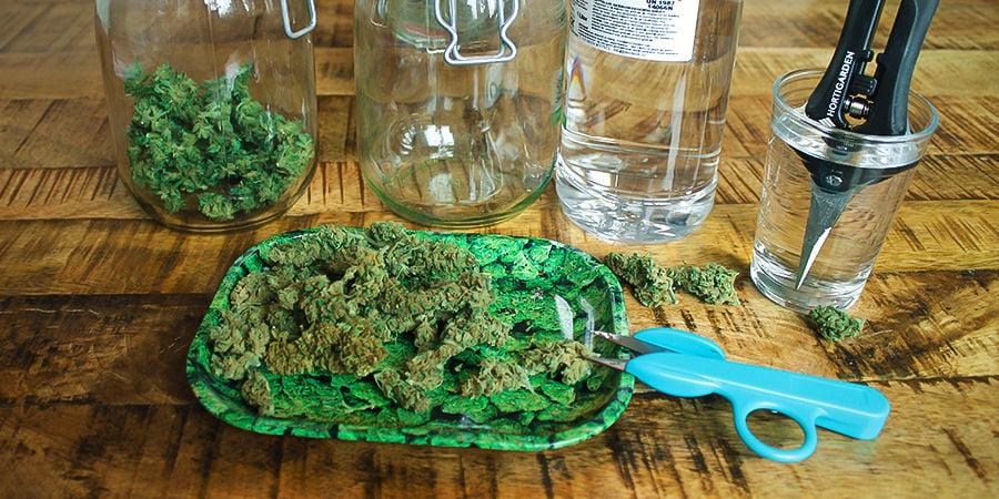 Wie man Cannabis-Erntescheren sauber hält