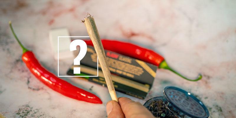 Chilis und Cannabis: das perfekte Paar?