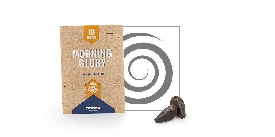 Morning Glory (Ipomoea tricolor) 10 grams