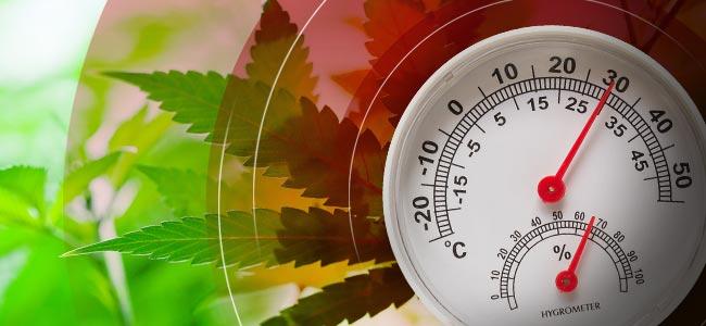 Temperatur Und Luftfeuchtigkeit