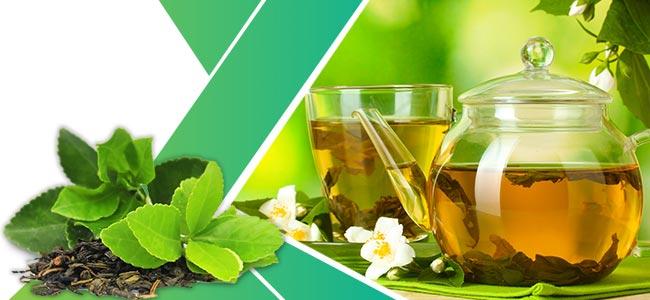 Kräuter Gewichtsabnahme: Grüner Tee
