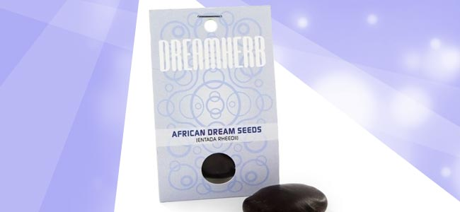 African Dream Seeds