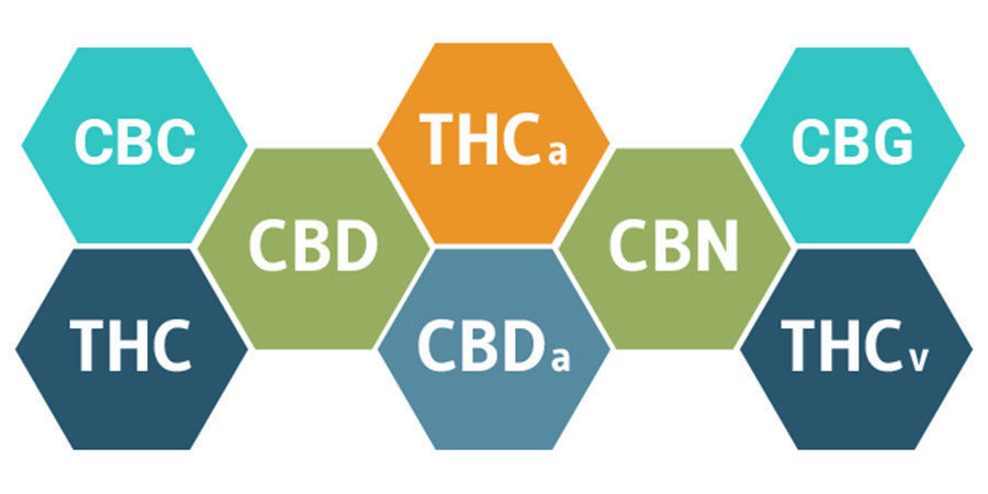 Der Entourage-Effekt Und Cannabinoide