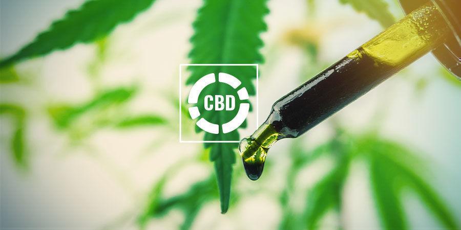 Vollspektrum-CBD-Öl