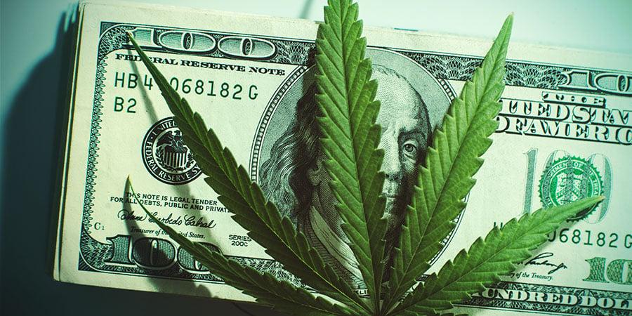 Der Vorteil Von Wiederverwendetem Mutterboden - Cannabis