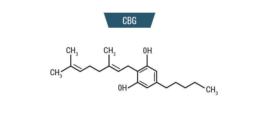 Molekül CBG