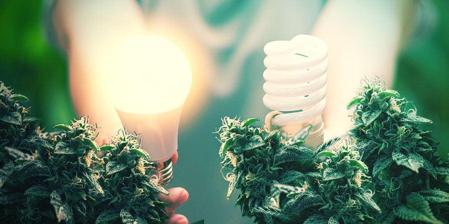 Fortschrittliche Lampentechnik