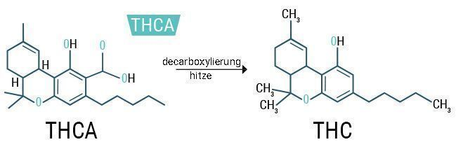 THCA%20 %20THC_DE