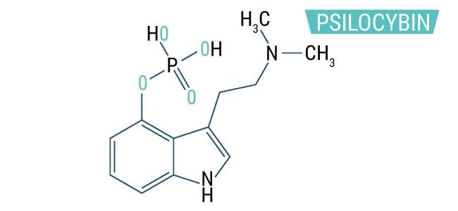 WAS IST PSILOCYBIN?