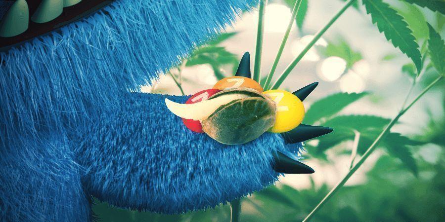 Monster Zkittlez Von Zamnesia Seeds Ist Eine Gewinnerin