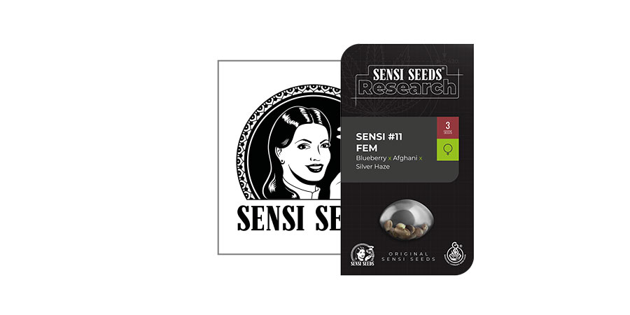 Sensi 11 (Sensi Seeds Research)