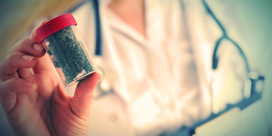 Die Wichtigkeit Alternativer Quellen Für Cannabinoide