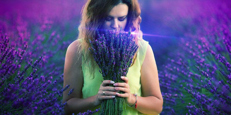 Cannabis & Linalool: Kann Es Dich Aufmuntern?