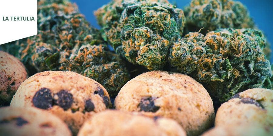 Coffeeshop La Tertulia Amsterdam - Cannabis-Esswaren