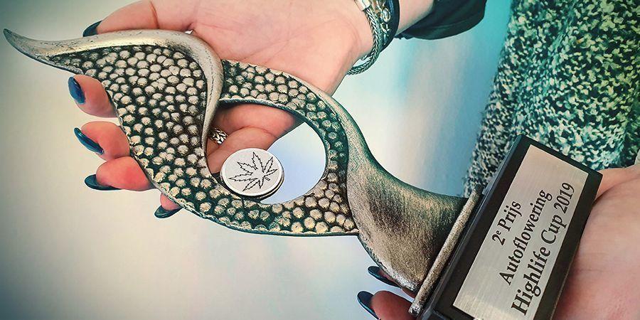 Zamnesia Seeds: Besondere Leistungen