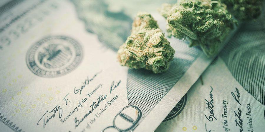 Warum es wichtig ist, beim Anbau von Cannabis Energie zu sparen