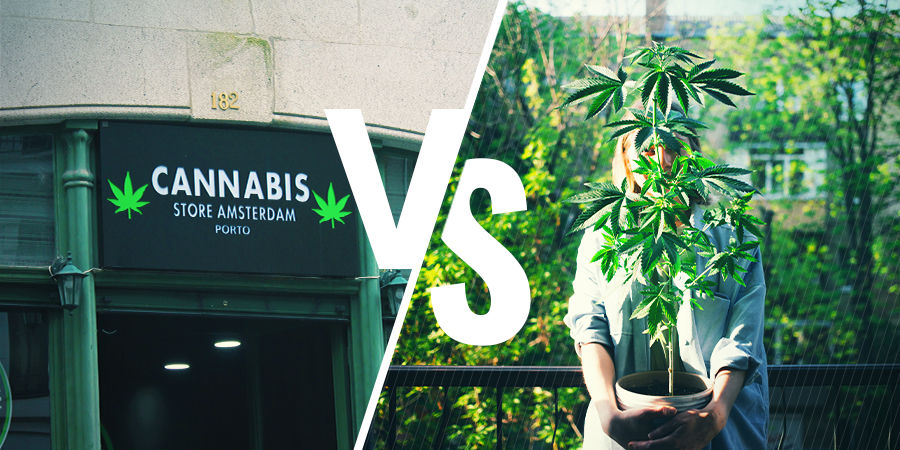 Wie Kommst Du An Cannabis?