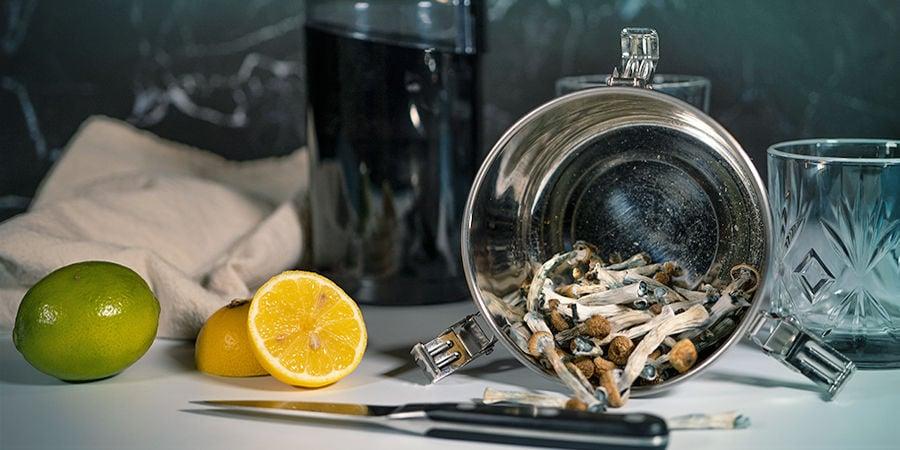 Zubereitung Eines Lemon Teks Mit Magic Mushrooms Oder Trüffeln