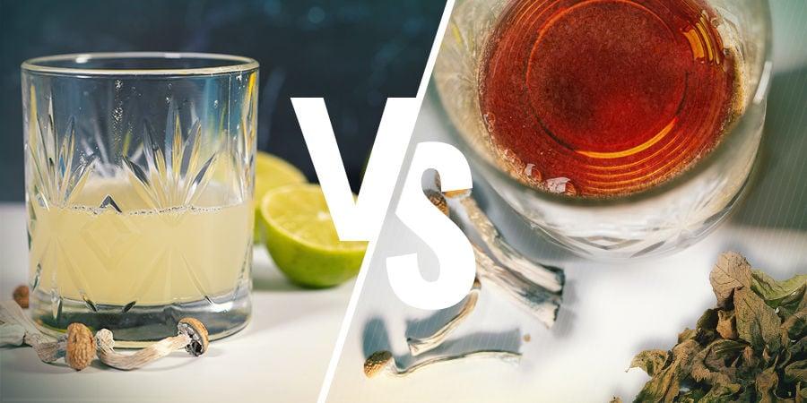 Lemon Tek Im Vergleich Zu Shroom-Tee