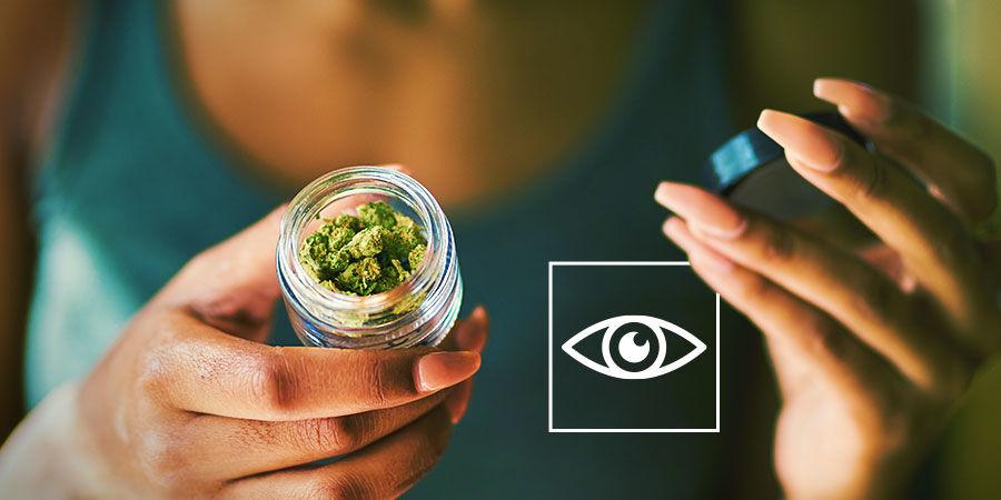 Cannabisverunreinigungen erkennen: Untersuche Dein Cannabis visuell