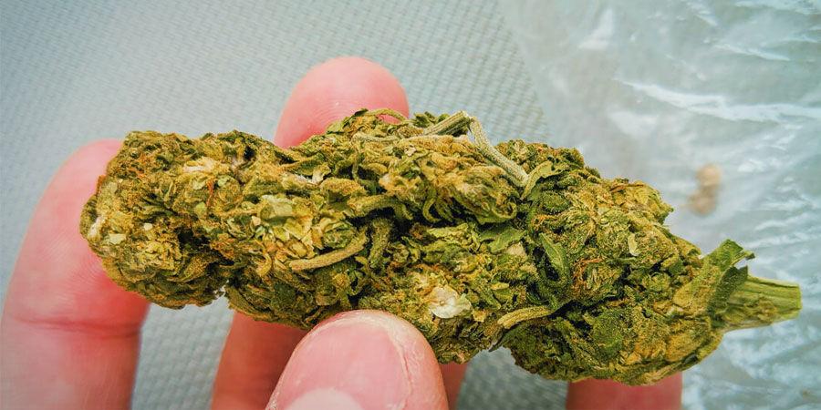 Arten von Cannabisverunreinigungen: Sand