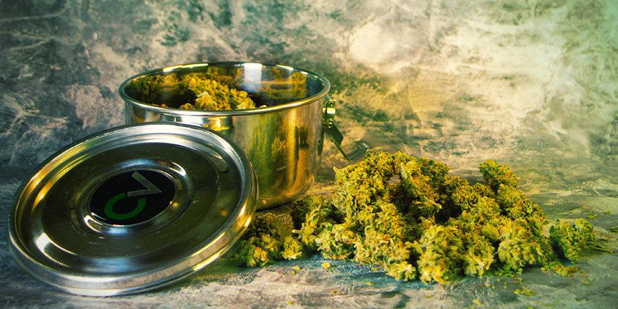 Was benötigt man nach der Cannabisernte?