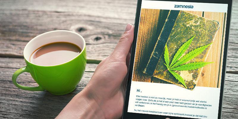 Abonniere Newsletters von bekannten Züchtern und Saatgutbanken