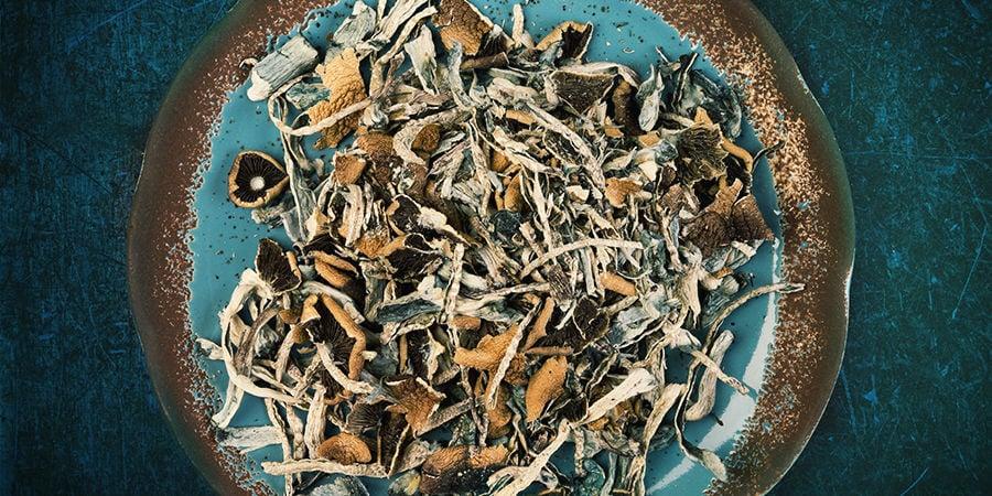 Frische Vs. Getrocknete Magic Mushrooms: Geschmack