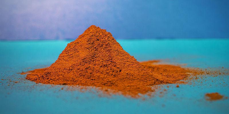 Pulverisierter Chaga – Pulver Oder Extrakt