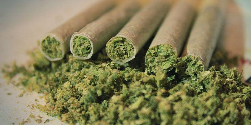 Was passiert, wenn man zu viel Cannabis raucht oder isst?