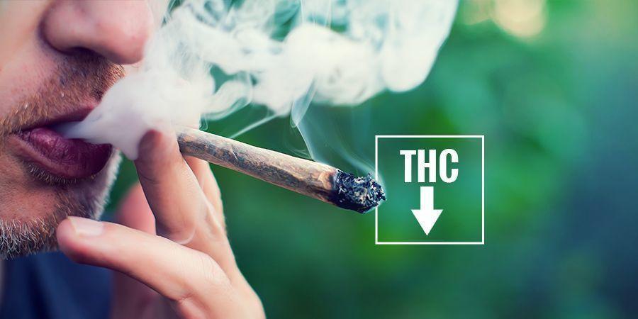 Kann man rote Augen verhindern? cannabis
