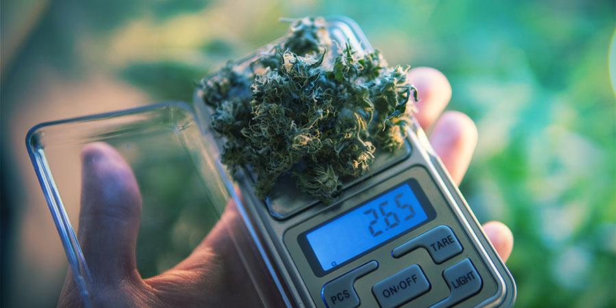 Das Dosieren Von Cannabisesswaren Ist Eine Kunst