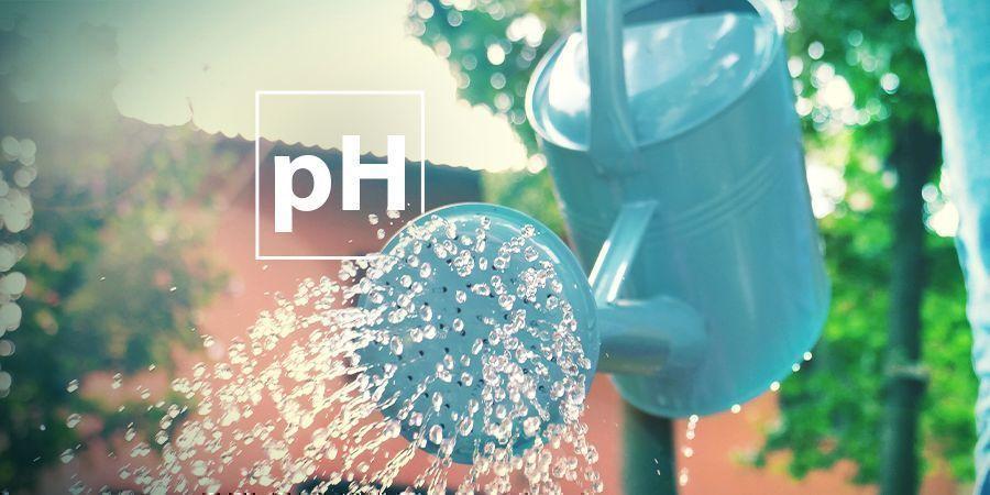 Probleme mit dem pH-Wert