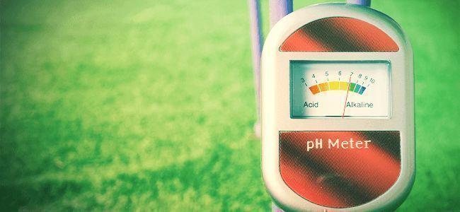 Besseres Weed: pH-Wert Verstehen