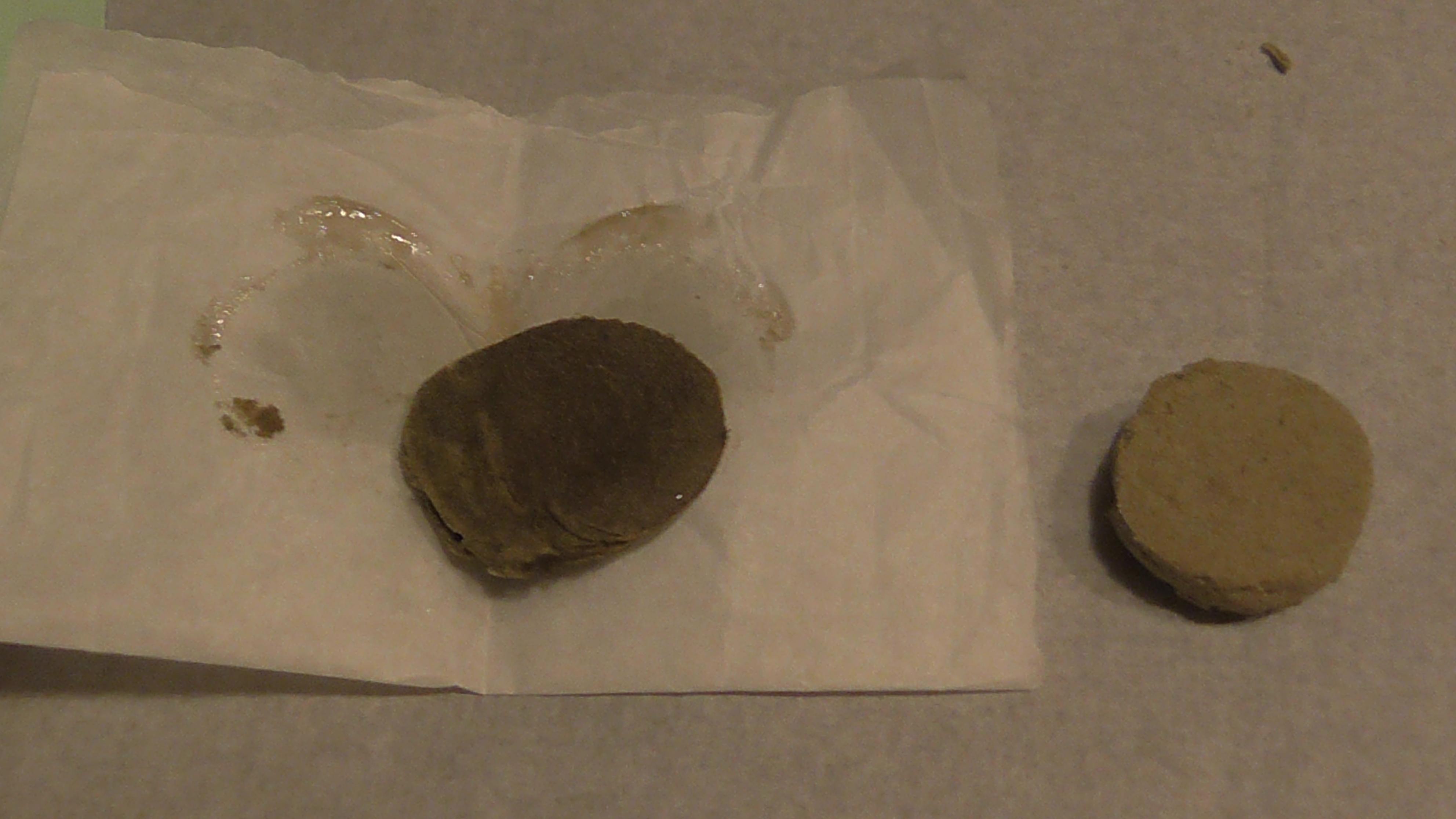 Hasch und rosin Münze