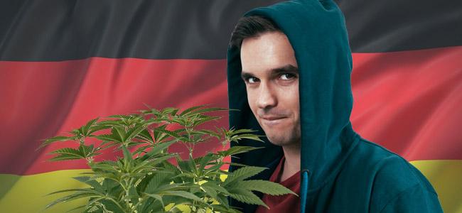 Anbau Cannabis Deutschland