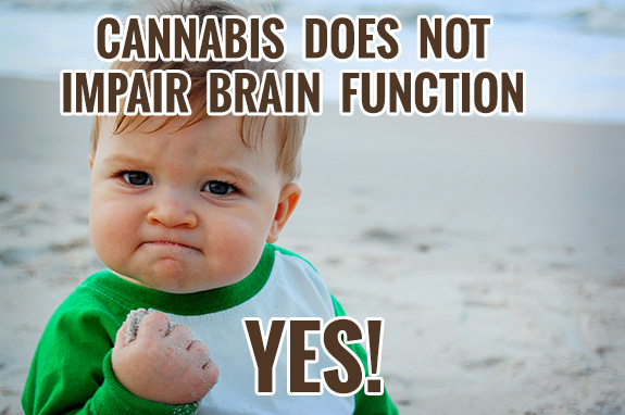 Cannabis does not impair brain function