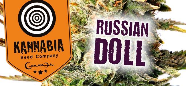 Kannabia Russian Doll