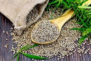 Tasche von Cannabis Samen