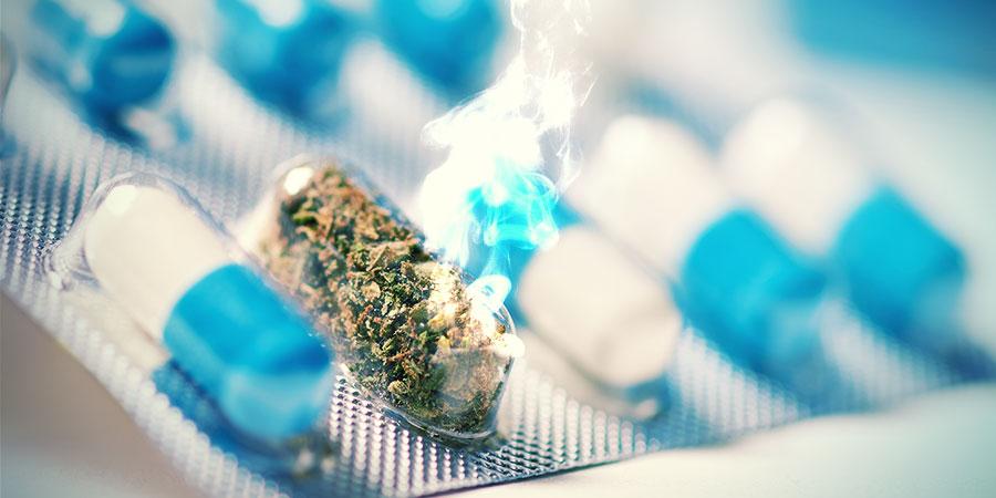 Kann Cannabis Die Schmerzmedikation Der Zukunft Werden?