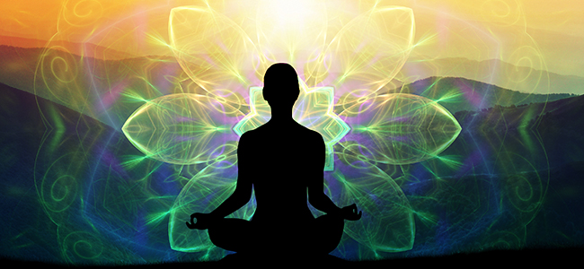 Meditieren Mit Ayahuasca