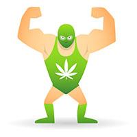 Cannabis zu stark
