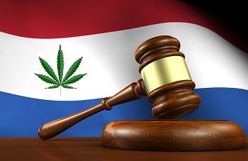 Dutch law