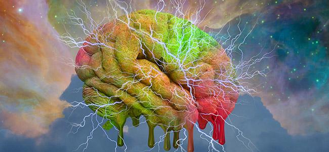 LSD und das Gehirn