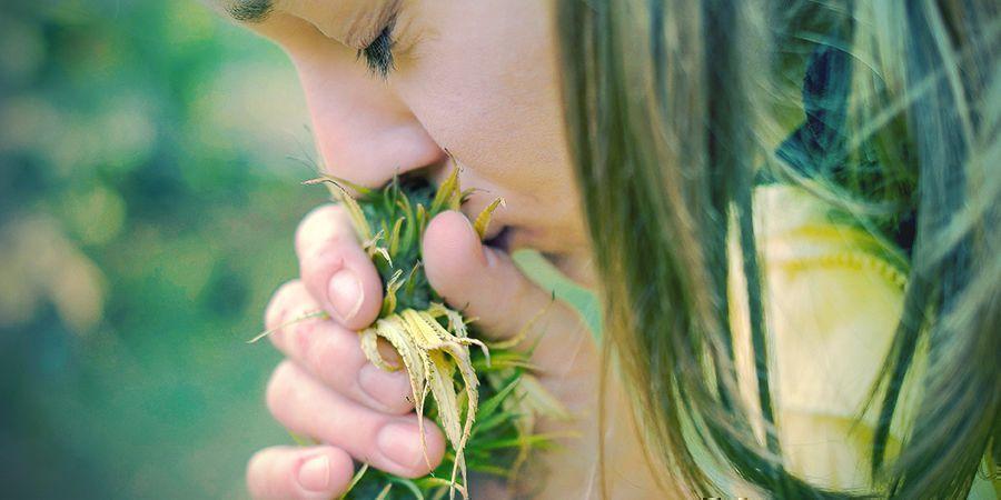 Gründe Den Tabak Wegzulassen: Dein Geschmacks- Und Geruchssinn
