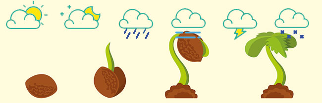 Wetter beeinflusst Cannabis