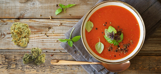 Tomatensuppe Cannabis