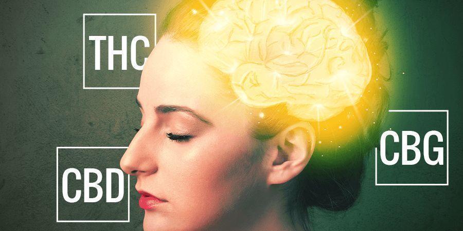 Cannabinoide